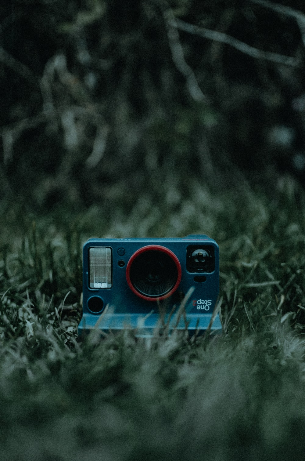 red and black polaroid camera on green grass