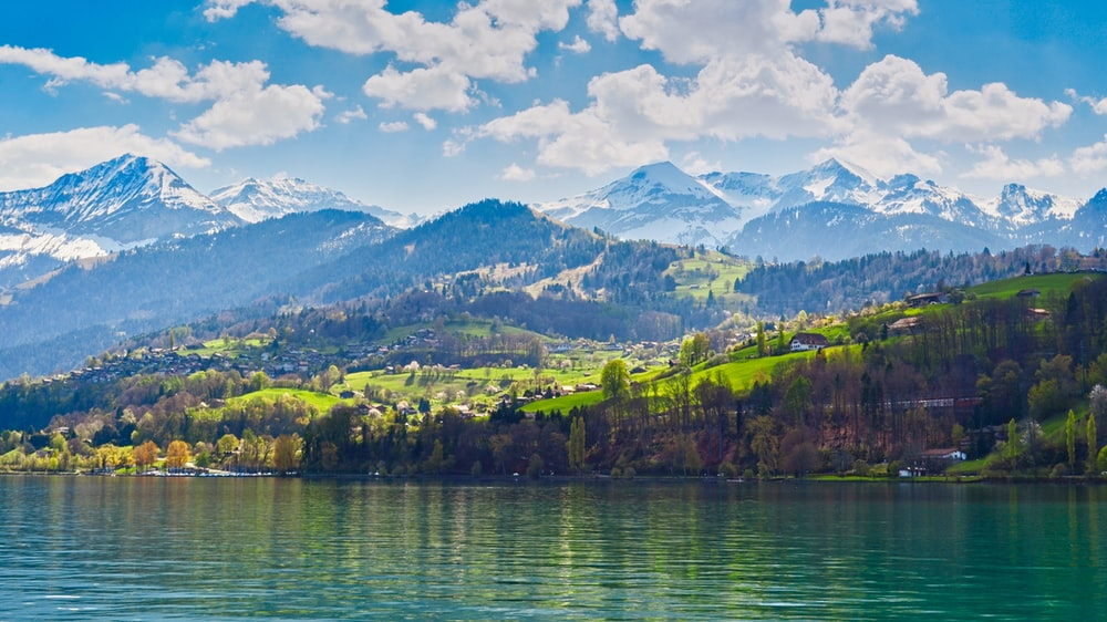 green trees on mountain beside body of water under blue sky during daytime