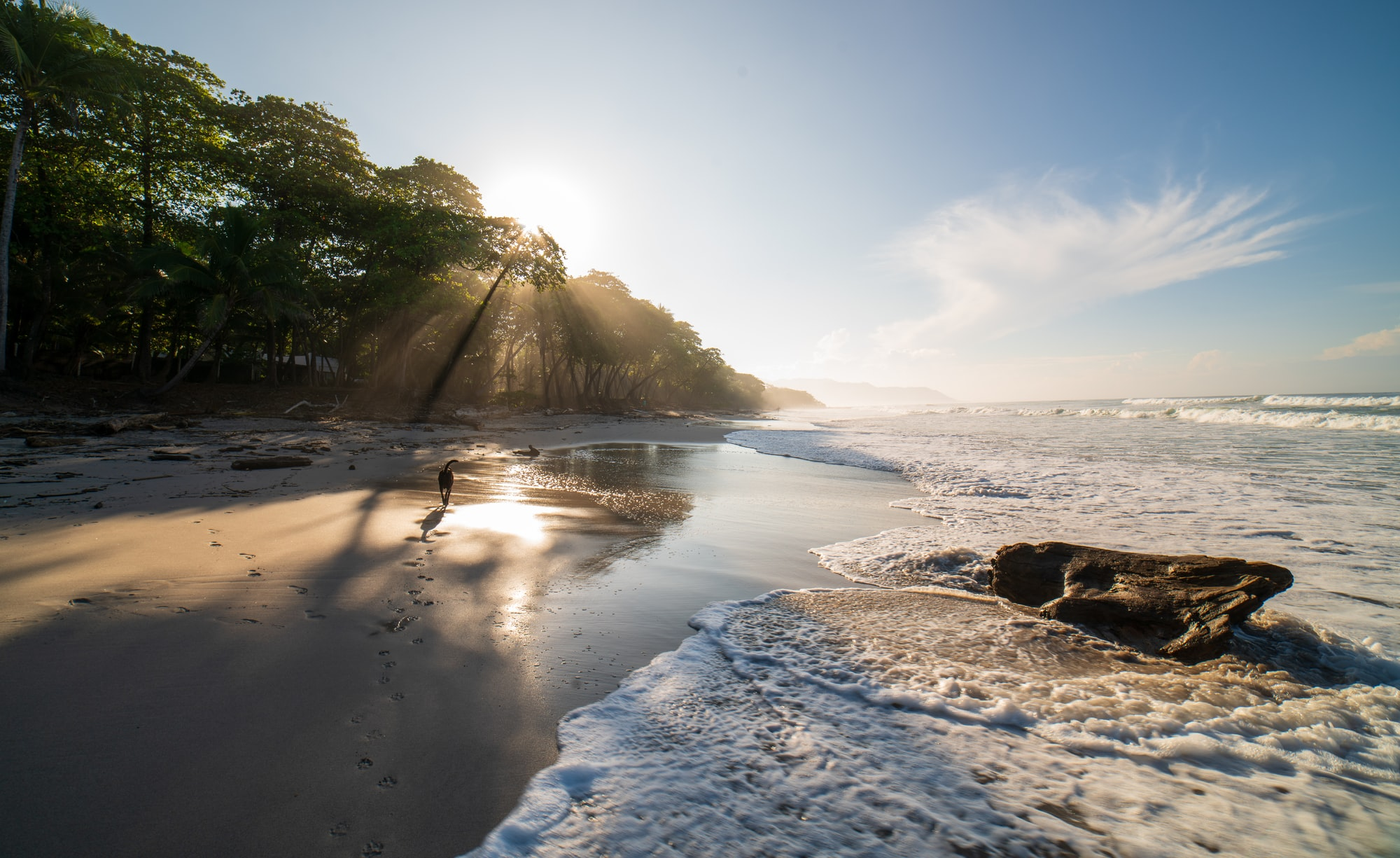 How to hire employees in Costa Rica: Pros and Cons
