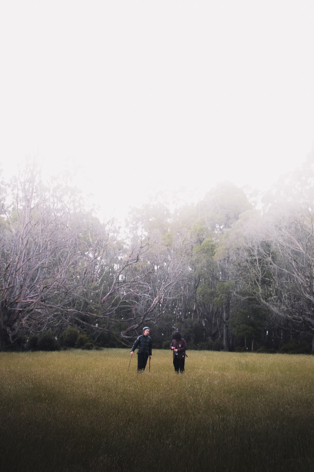 man and woman walking on green grass field surrounded by trees during daytime