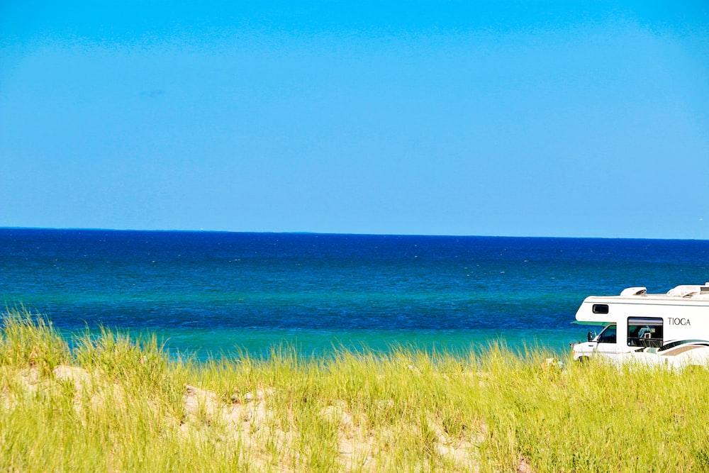 green grass near blue sea under blue sky during daytime
