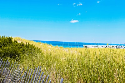 green grass field near body of water during daytime cape cod teams background
