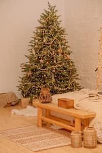 Under the Mistletoe  christmas stories