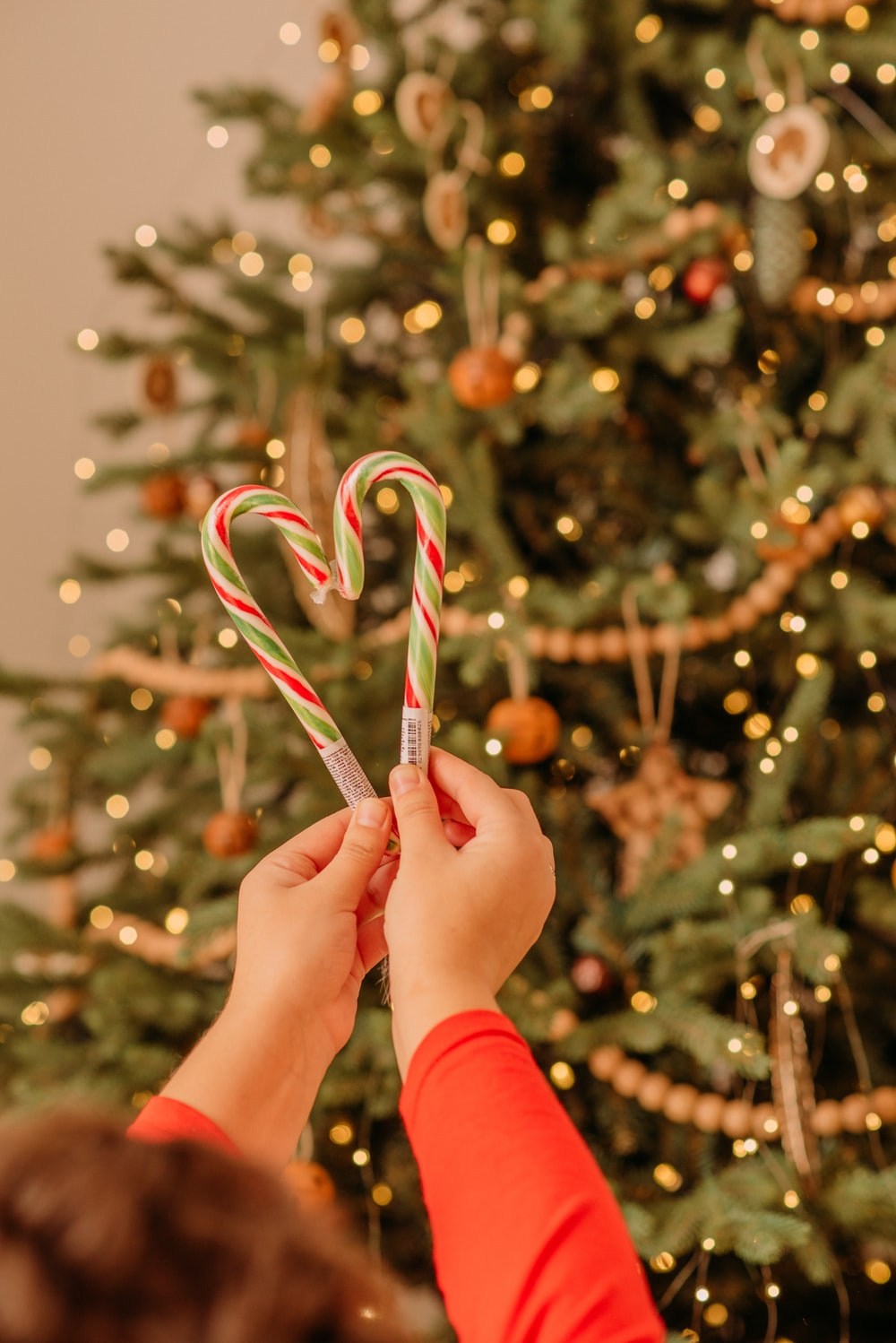 person holding red and white candy cane