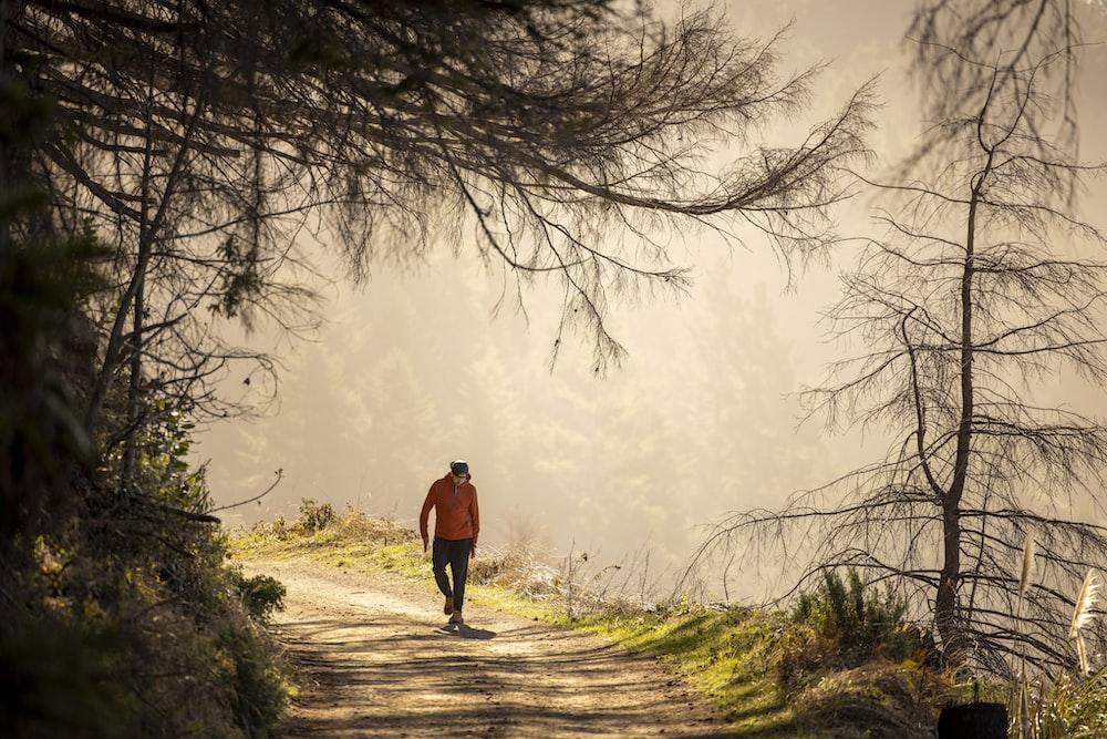 man in black jacket walking on pathway between bare trees during daytime