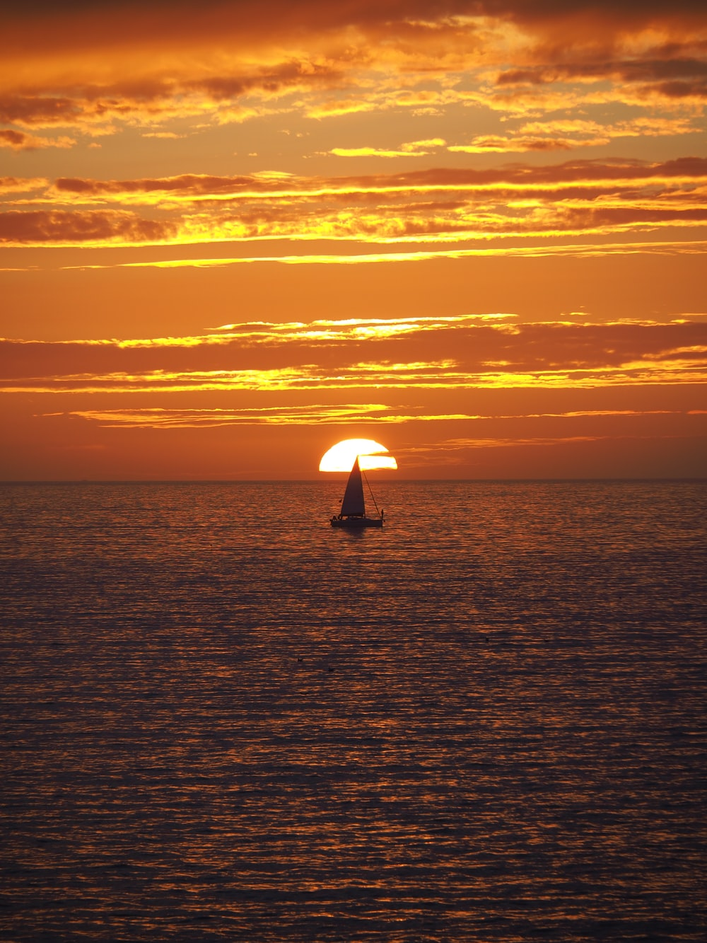 silhouette of person holding umbrella on sea during sunset