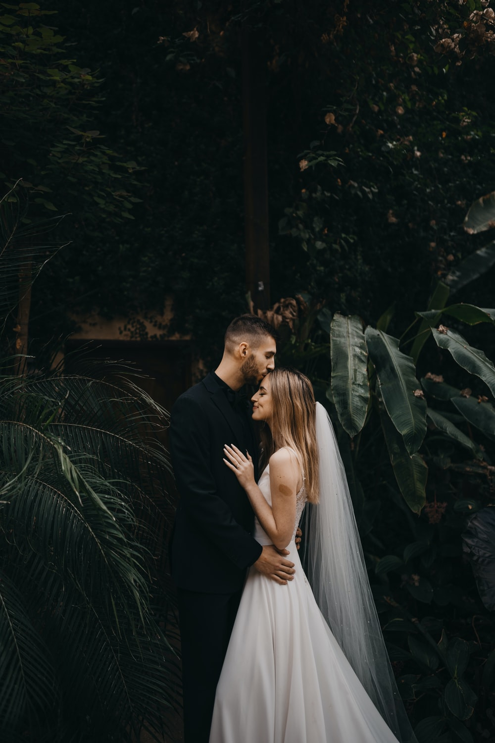 man and woman kissing near green plants during daytime