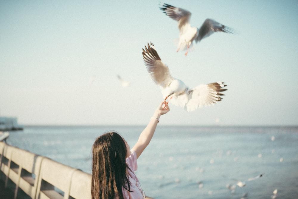 girl in pink dress feeding white bird