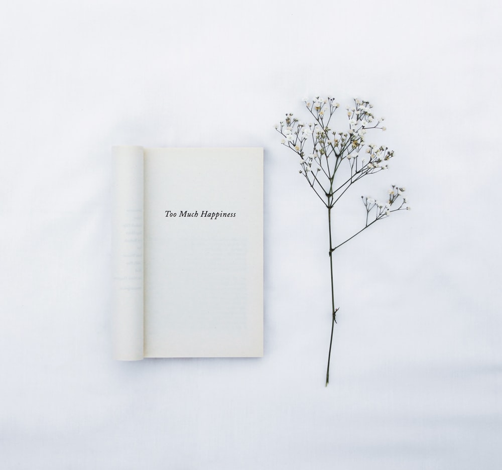 white book on white surface