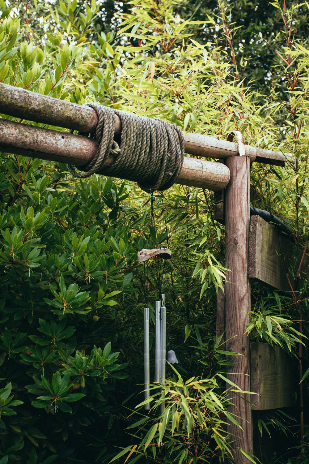 brown wooden fence with green plants