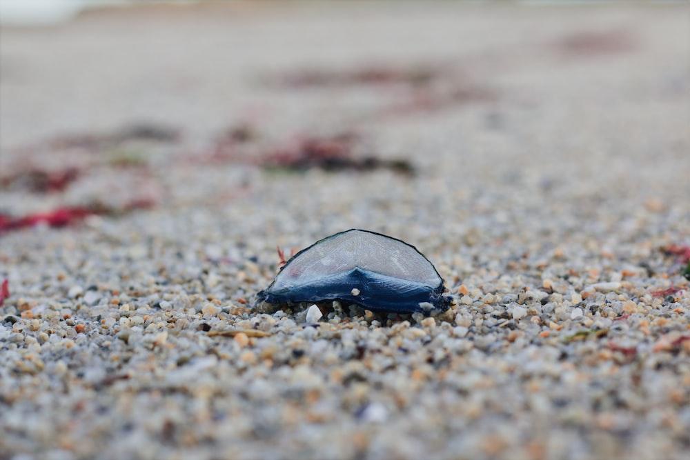 black stone on brown sand