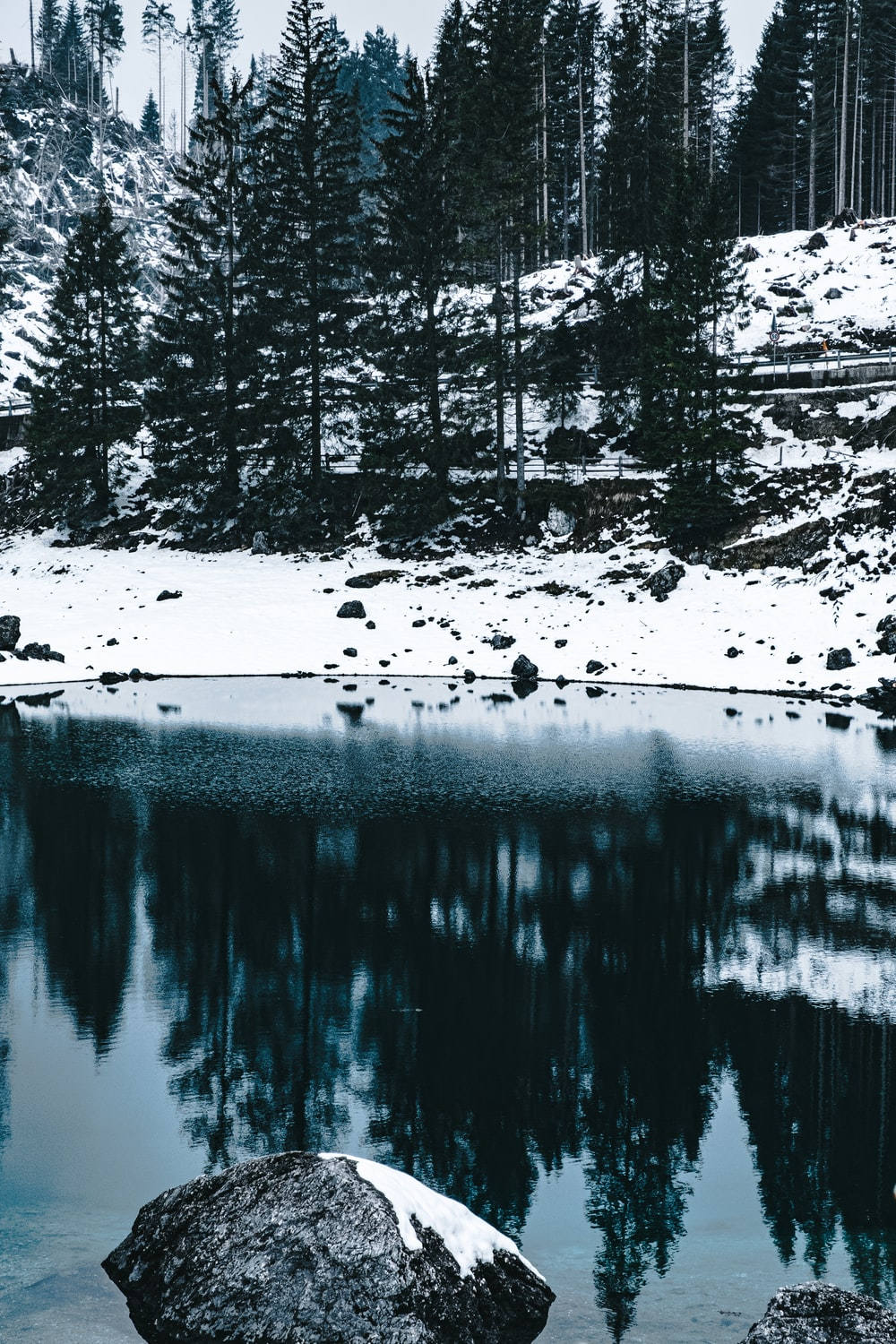 body of water near trees covered with snow