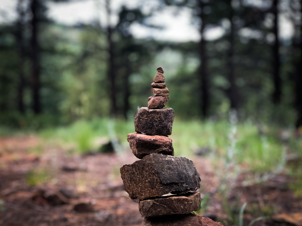 brown rock stack in forest during daytime