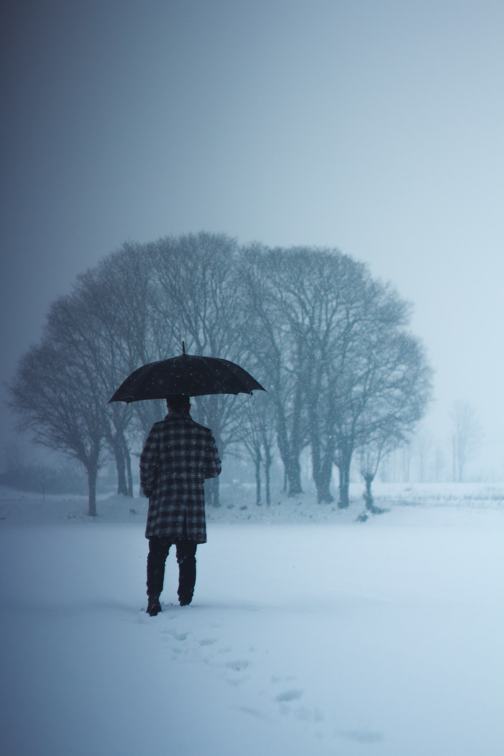 person in black and white plaid coat holding umbrella standing on snow covered ground