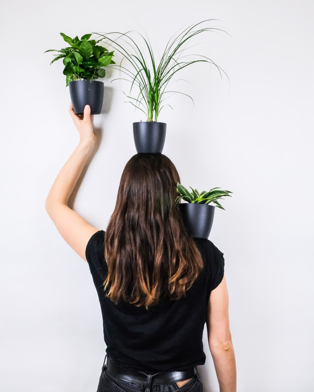 woman in black sleeveless shirt holding green potted plant