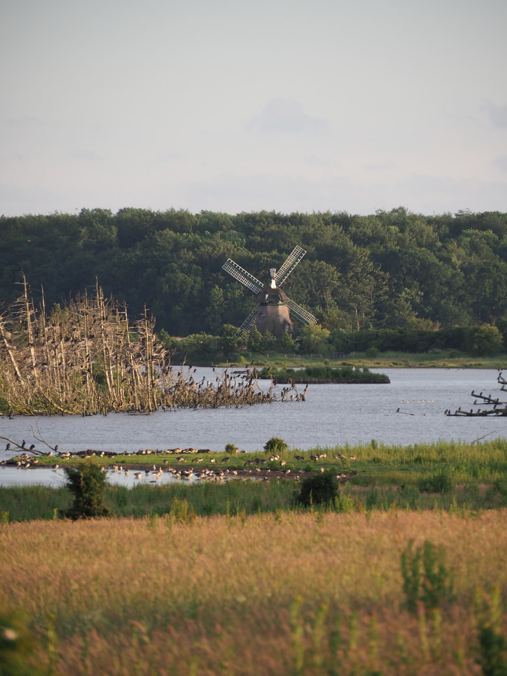brown and white windmill near green grass field and body of water during daytime