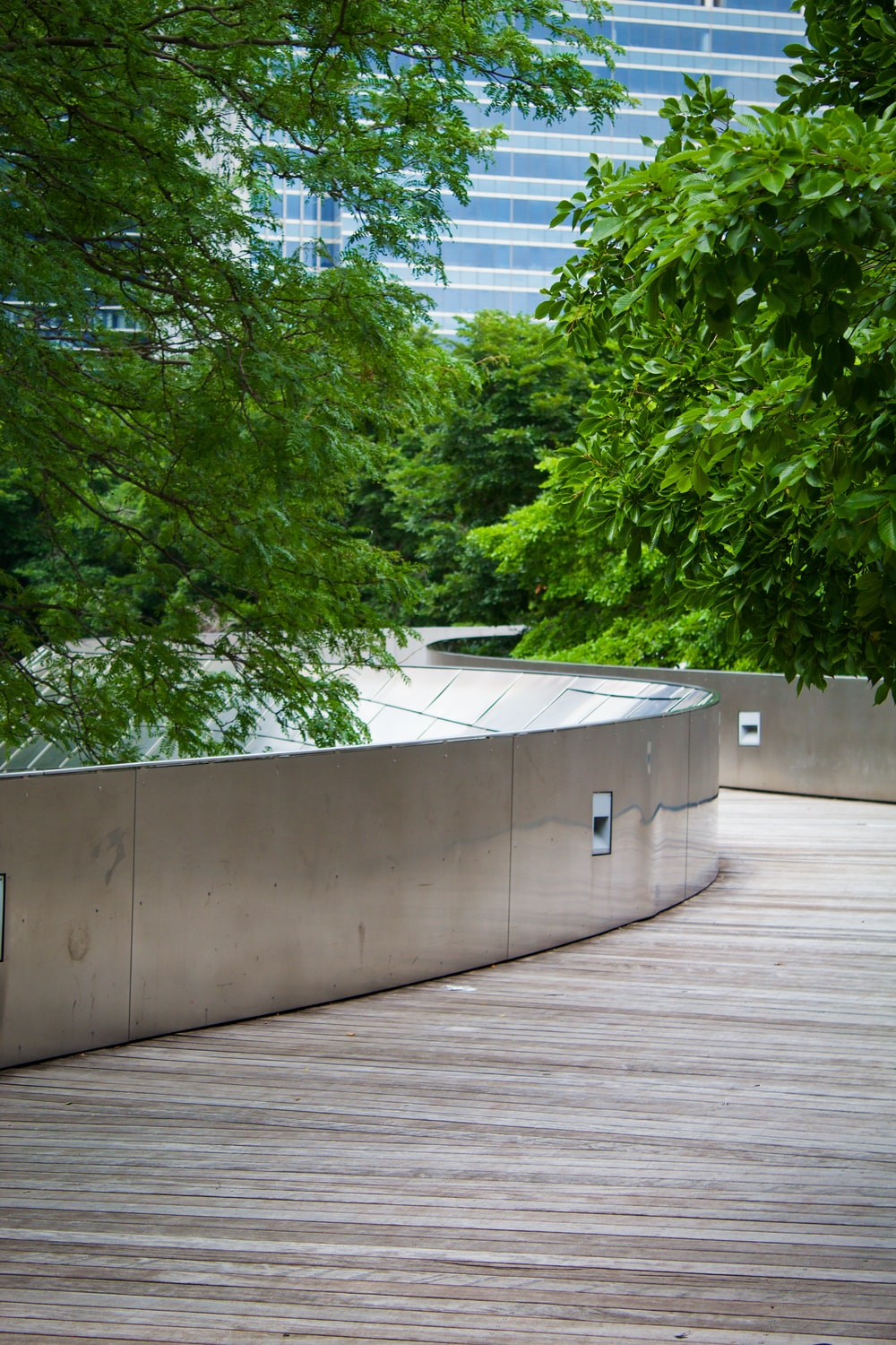 green trees beside white concrete wall