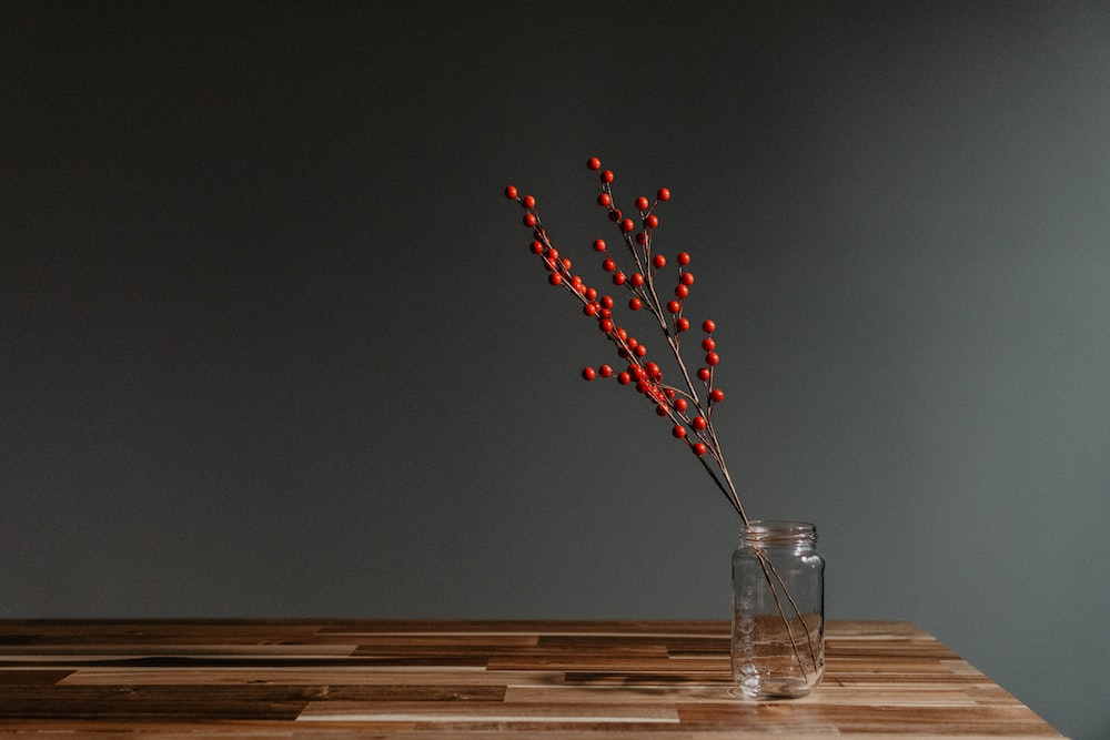 red and white flower in clear glass vase