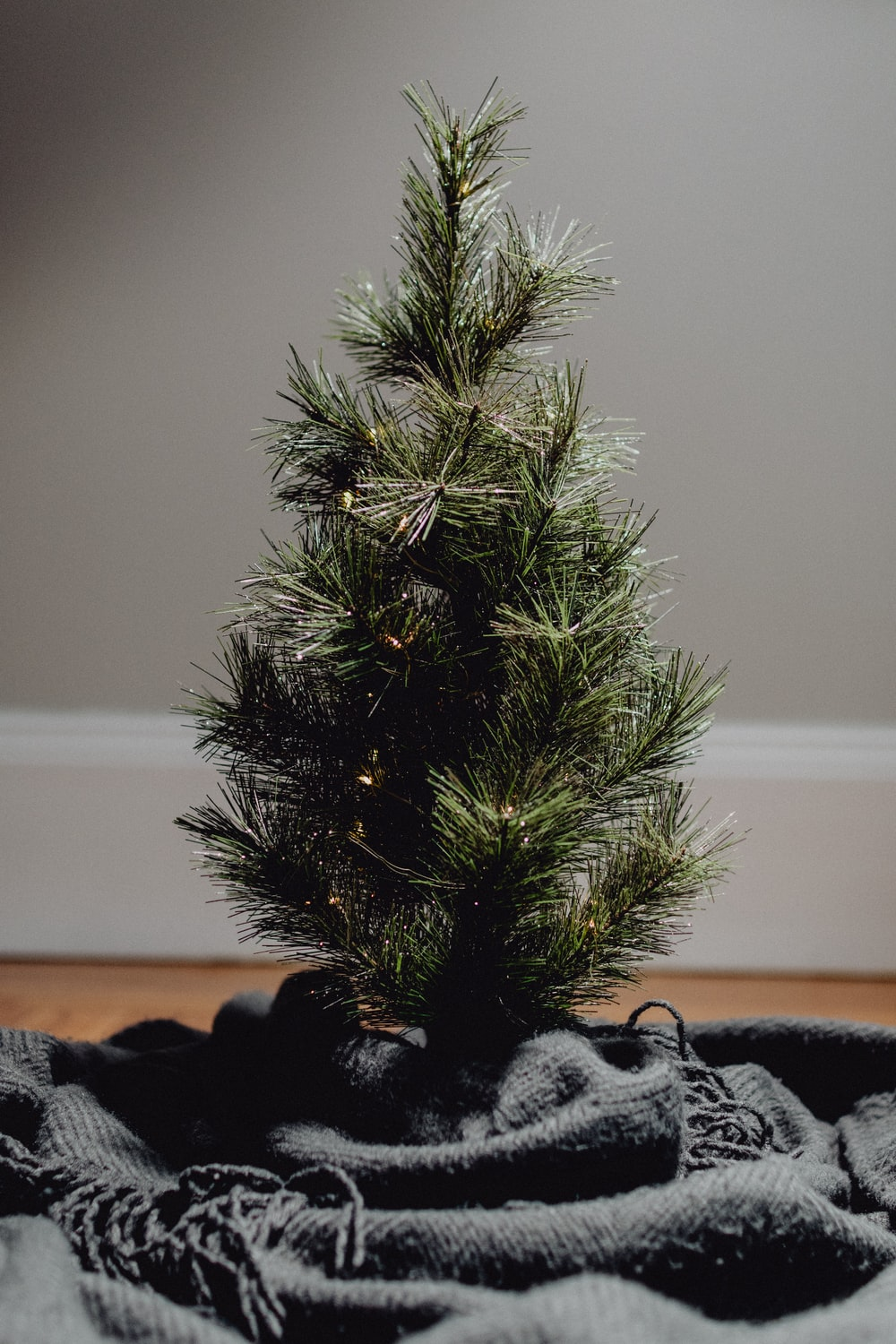 green pine tree on black and white textile