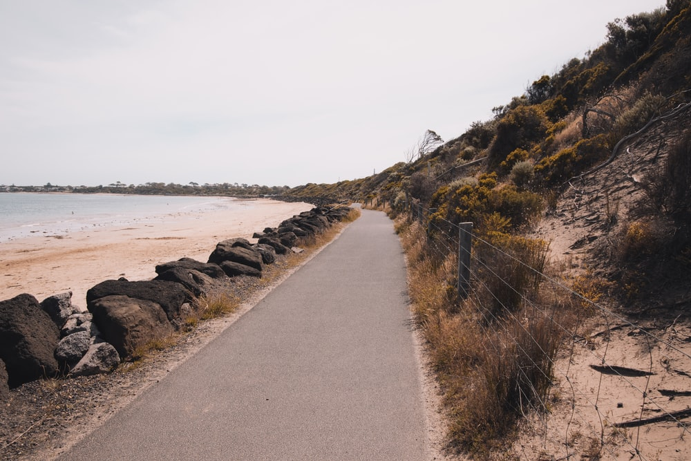 gray concrete pathway near body of water during daytime