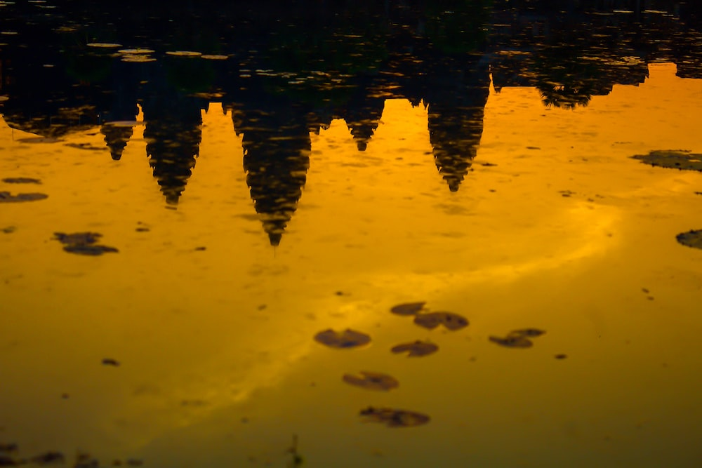 reflection of sun on water