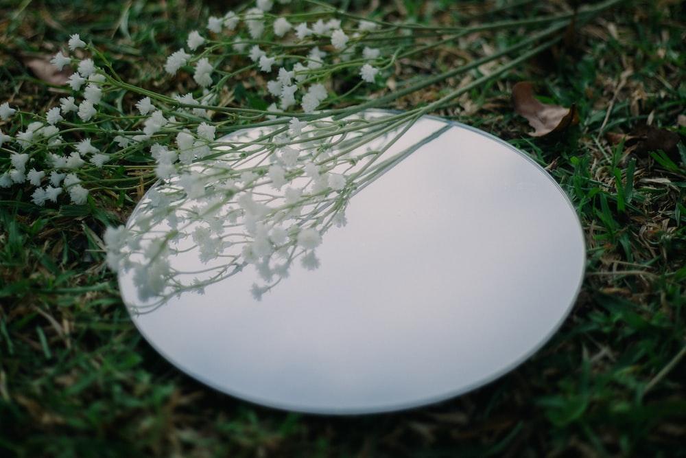 white round ornament on green grass
