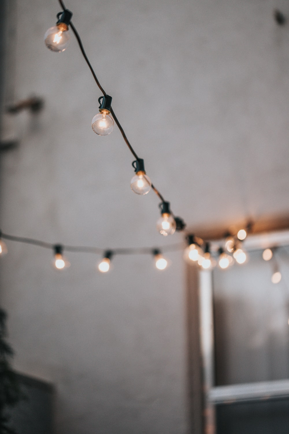 white and brown string lights
