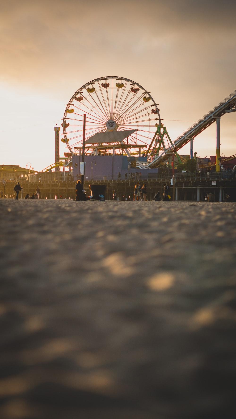people walking on park during sunset