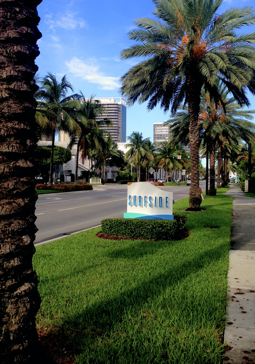 white and blue concrete building near palm trees during daytime