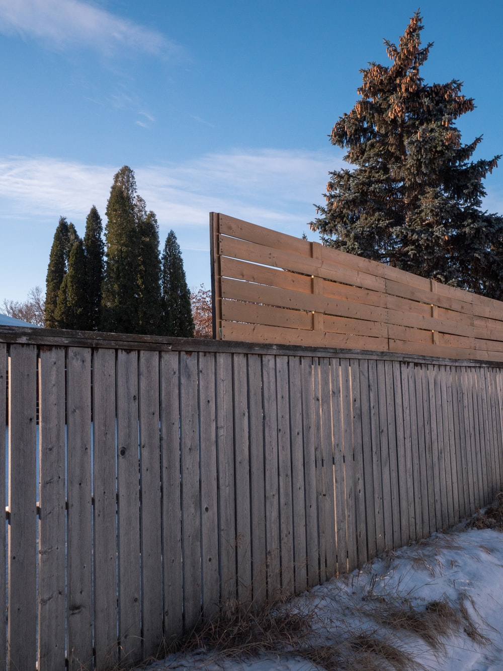 brown wooden fence near green trees under blue sky during daytime