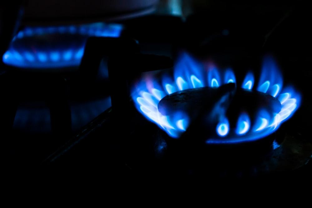close up photo of burning wood