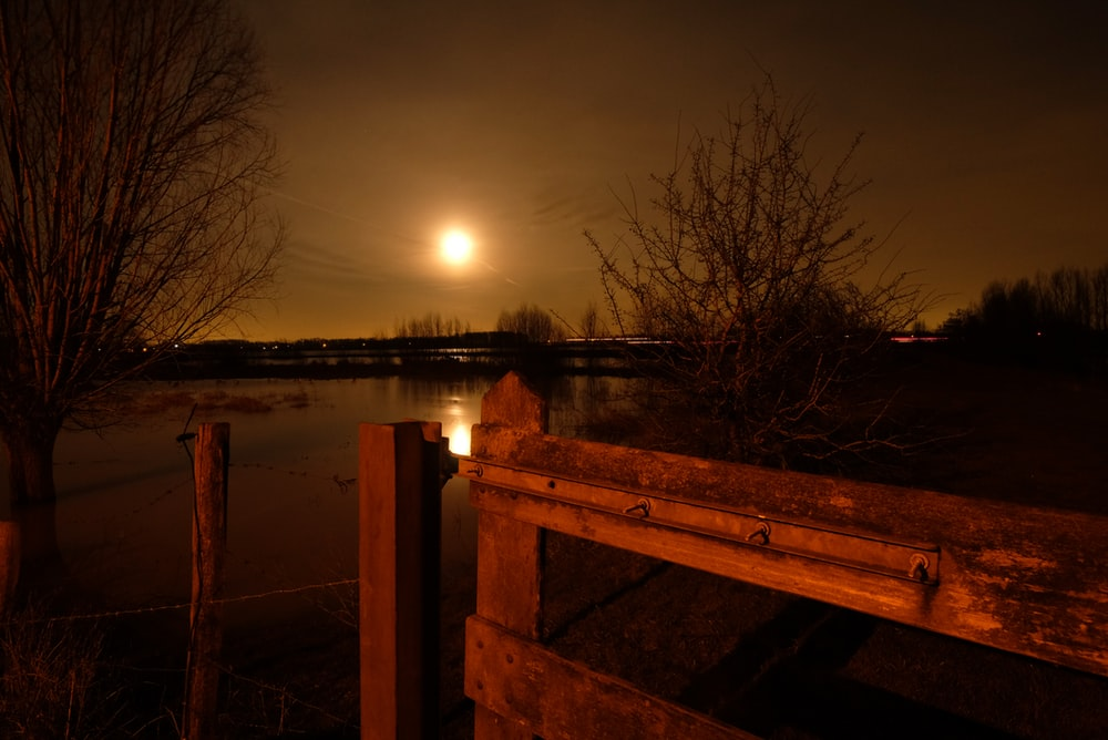 brown wooden bench near body of water during night time