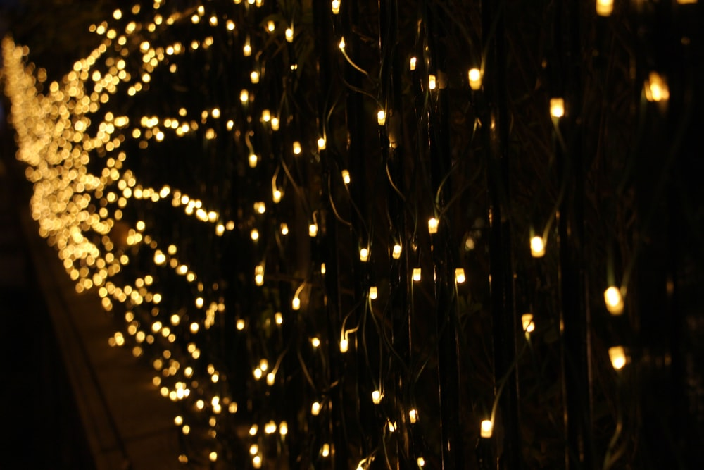 yellow string lights on black wall