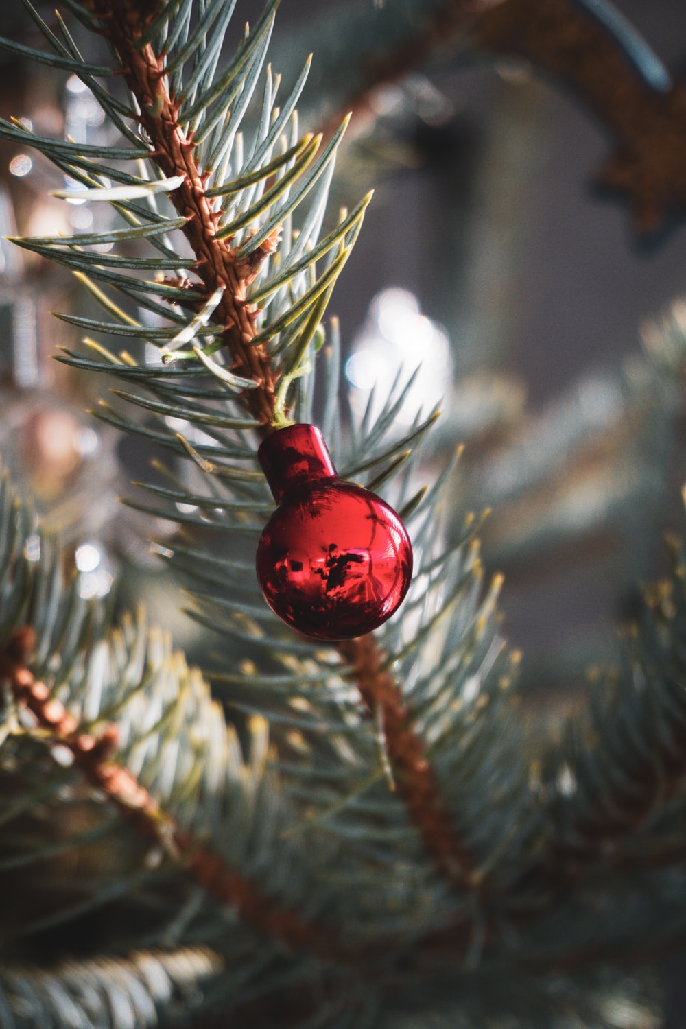 red bauble on green tree