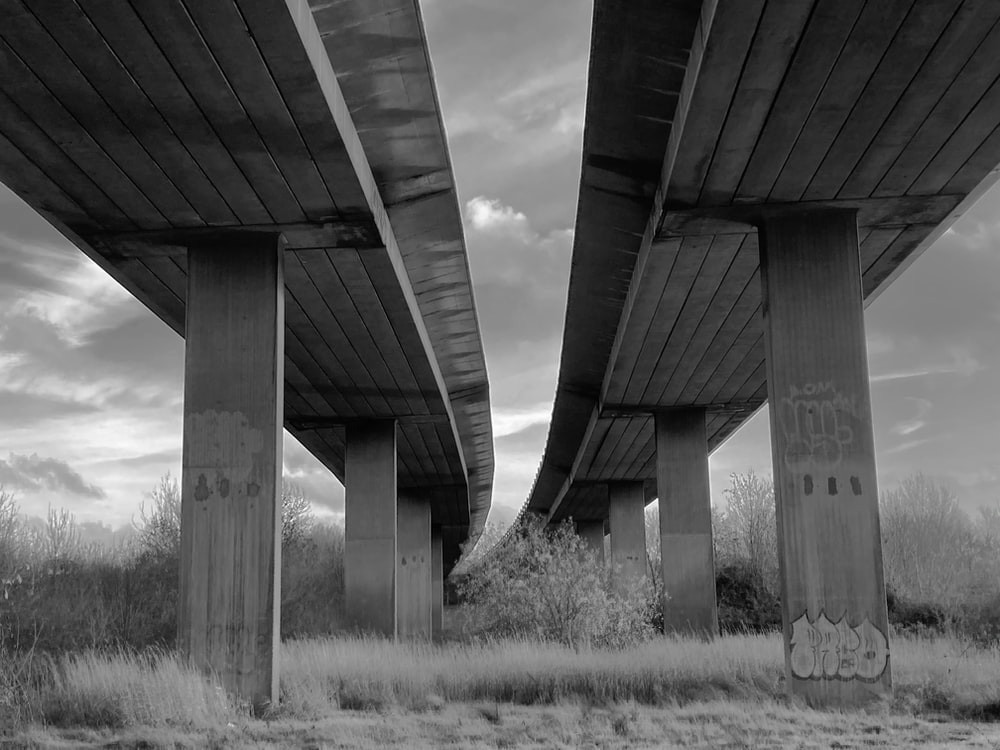 grayscale photo of bridge over grass field
