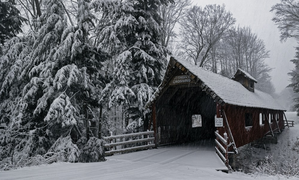 red wooden house near trees covered with snow during daytime