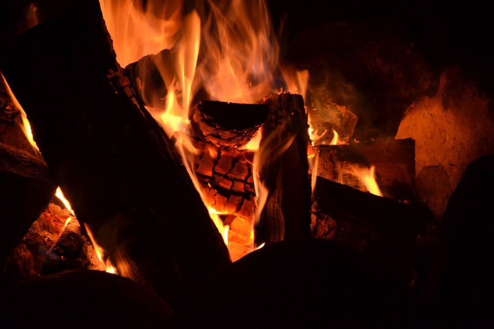burning wood in fire pit