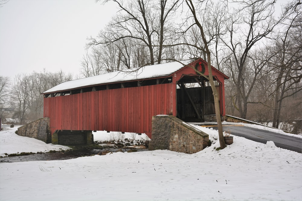 red wooden barn near bare trees during daytime