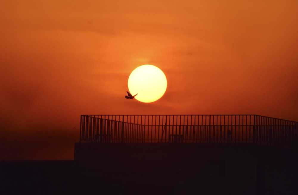 silhouette of man standing on the ground during sunset