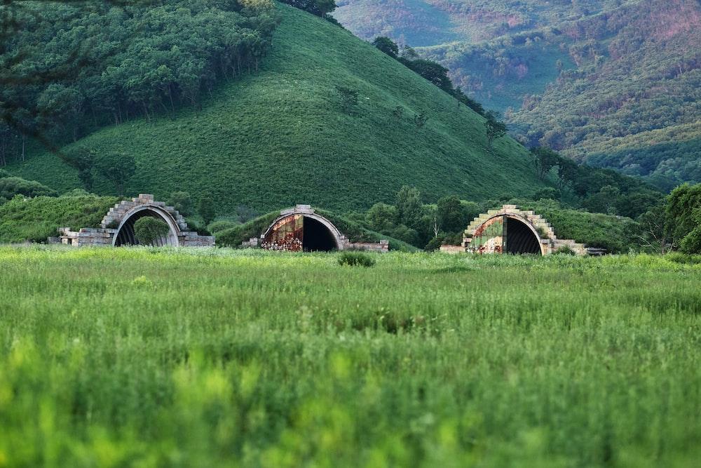 brown wooden bridge on green grass field near green mountains during daytime