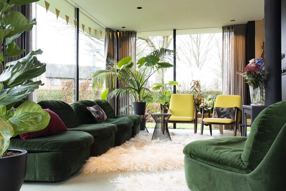 green leather sofa near green sofa