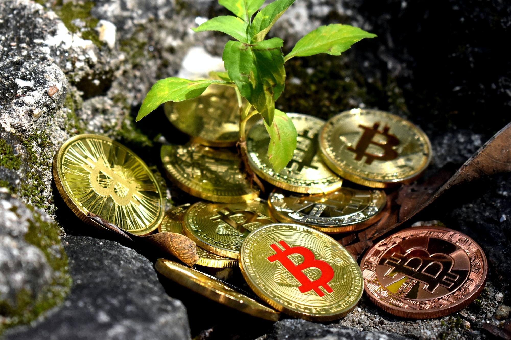 Zużycie energii przez Bitcoin jest mniejsze i bardziej zielone niż przy jakimkolwiek innym dużym przemyśle