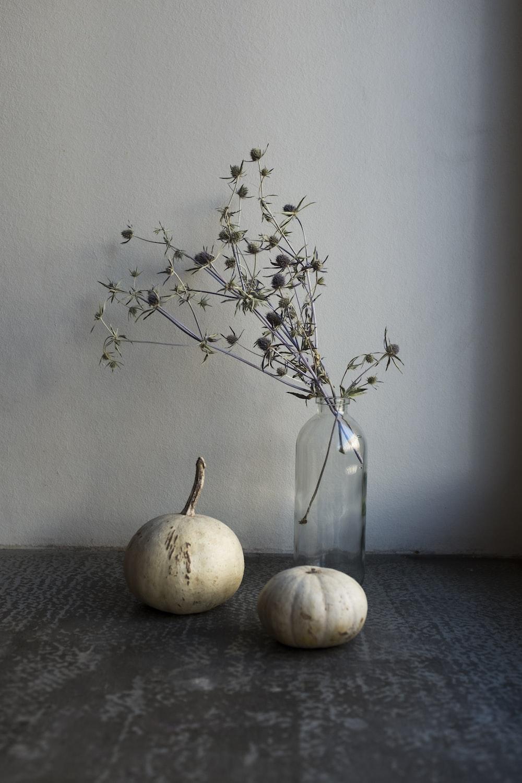 white round fruit on black table