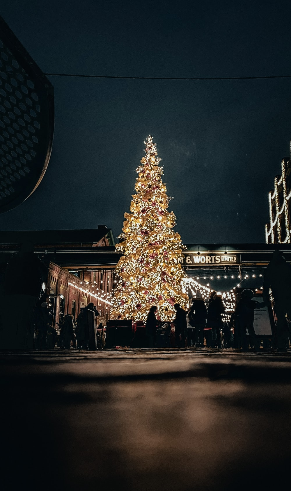people walking near lighted christmas tree during night time