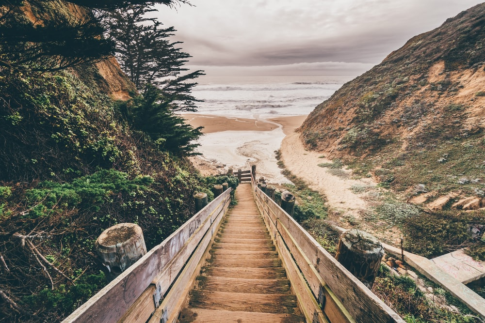 brown wooden bridge on brown sand during daytime