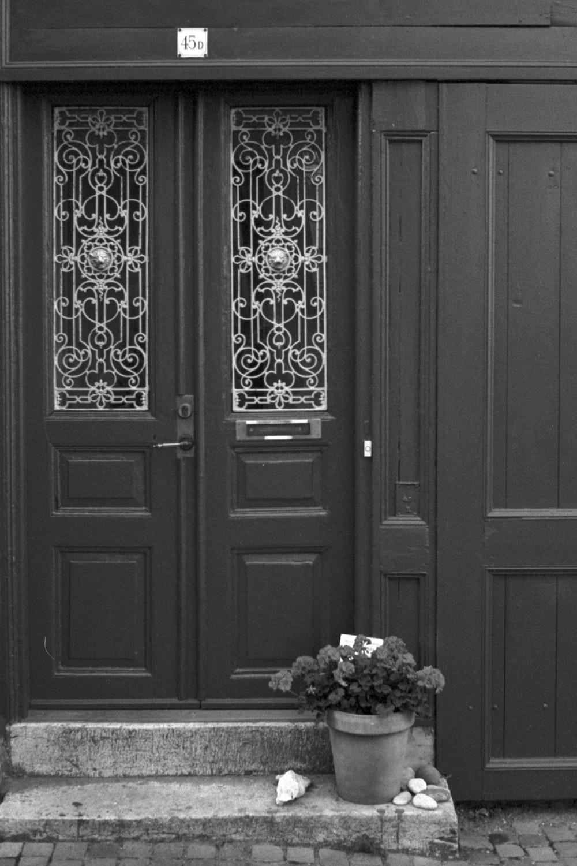 white flowers on white wooden door