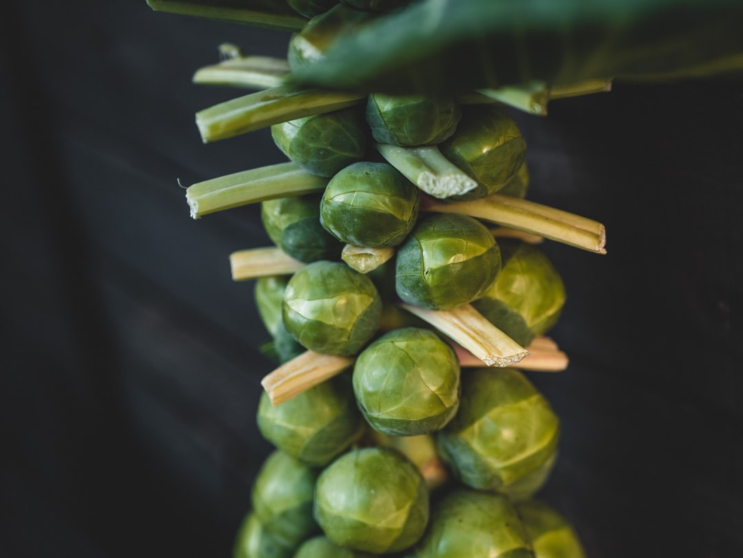 Gardening Tips for Brussels Sprouts