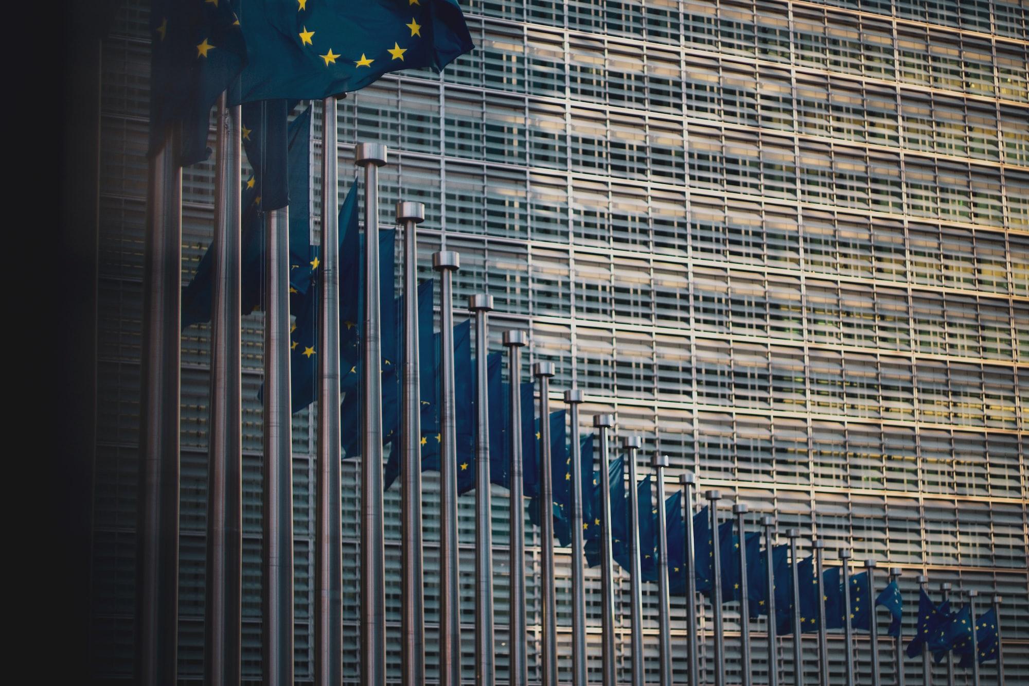 Hur mycket, och vad, bestämmer egentligen EU?