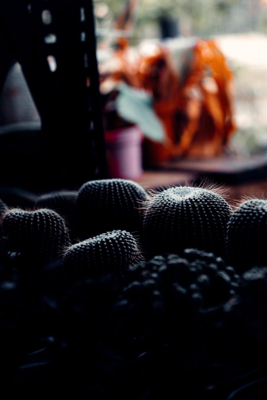 black and white crochet textile