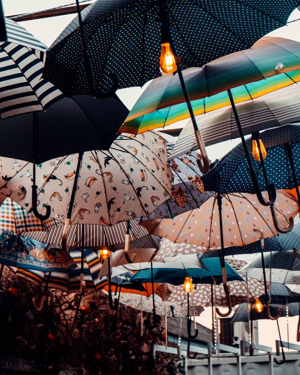 blue and white umbrella umbrella during daytime